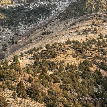 Hart Mountain Canyon