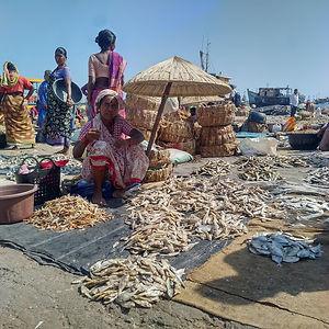 women fish vendor 1.jpg