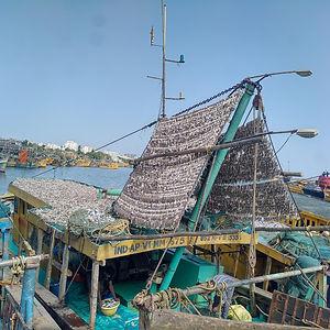 fish drying on baot.jpg