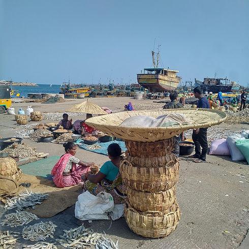 Women fish vendor1.jpg