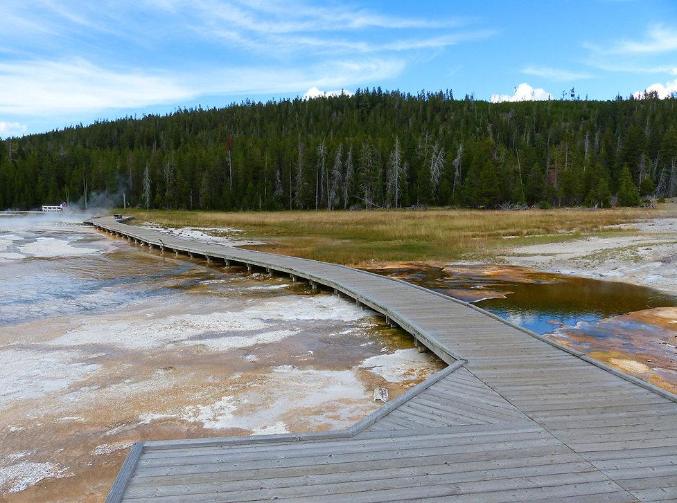 Yellowstone National Park Upper Geyser Basin