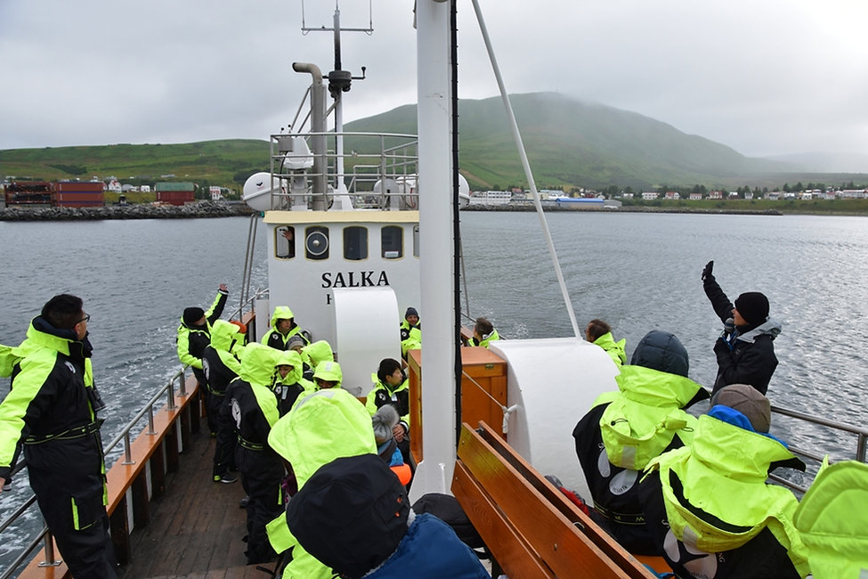 islande iceland husavik port whale watching bateau baleine salka