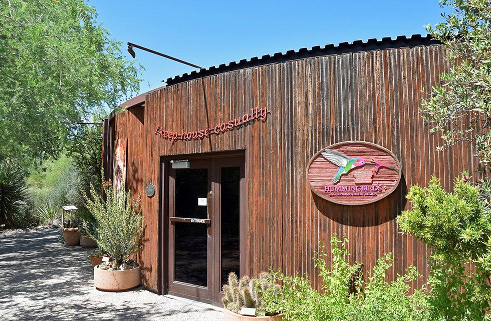 Arizona Sonora Desert Museum - hummingbirds - colibris