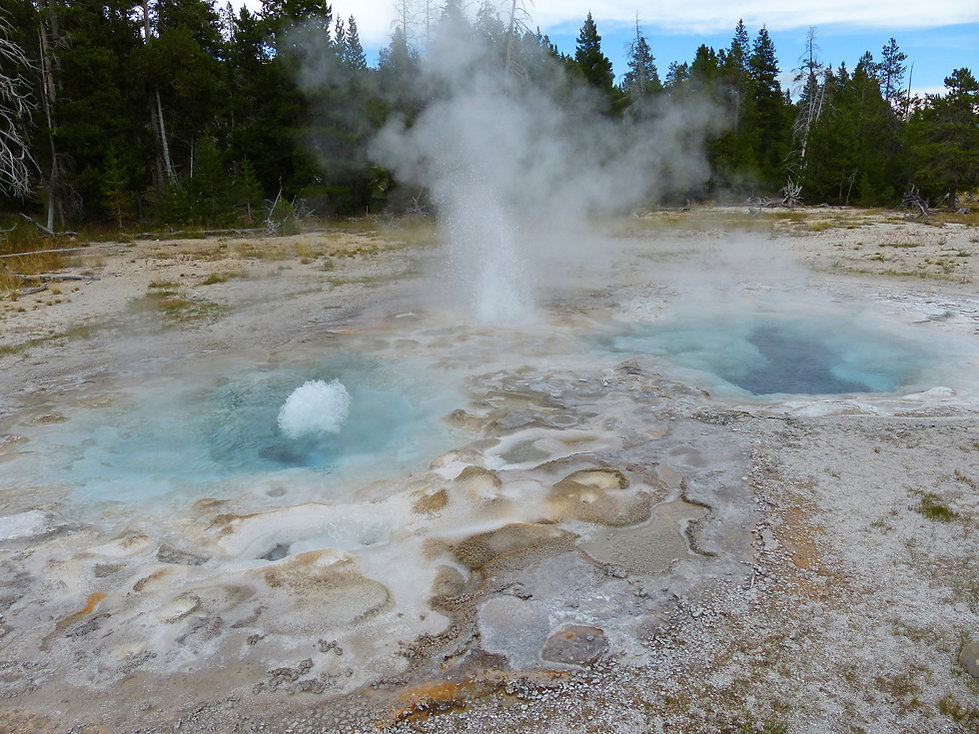 Yellowstone National Park Upper Geyser Basin Spasmodic Geyser