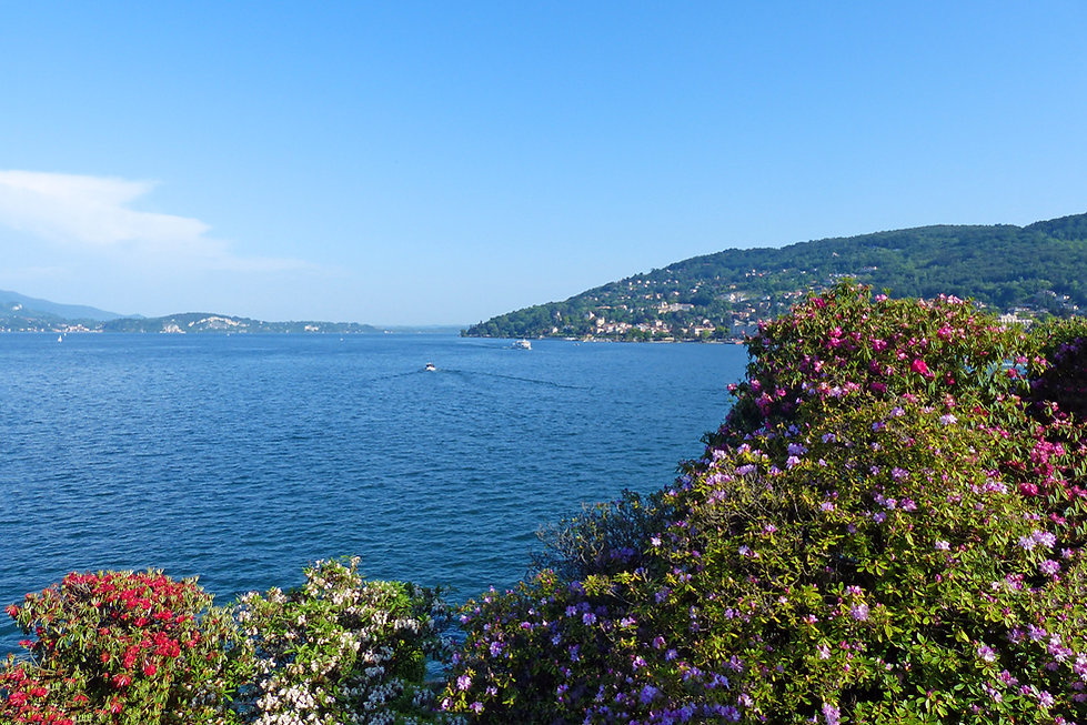Italie Lac Majeur Isola Bella jardin rhododendrons fleurs