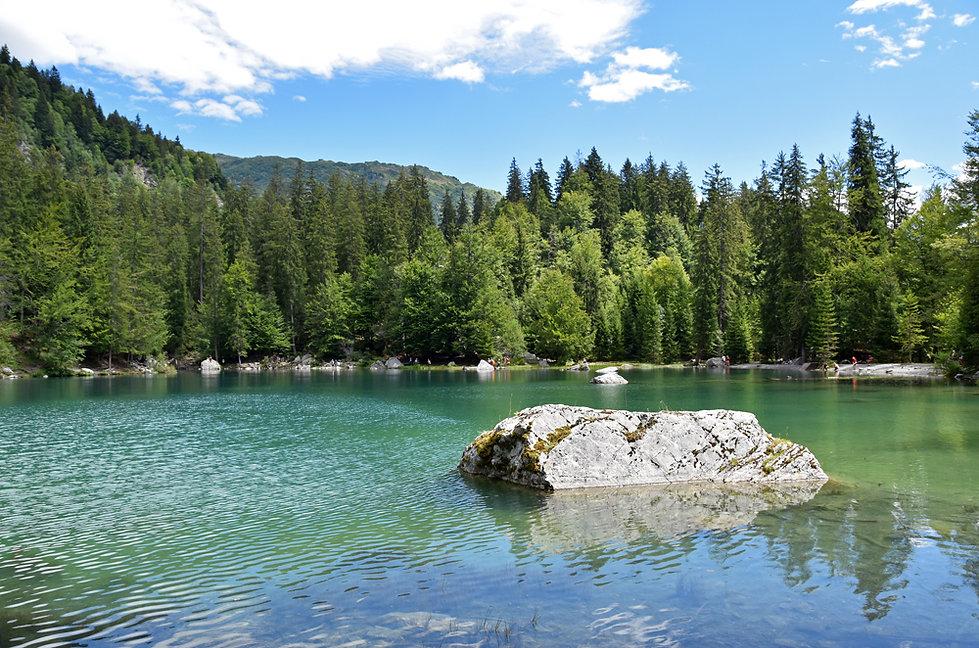 lac vert - passy - plaine joux