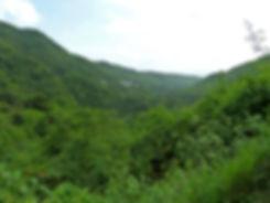Guadeloupe - Paysage
