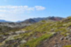 Islande Berserkjahraun piste 558