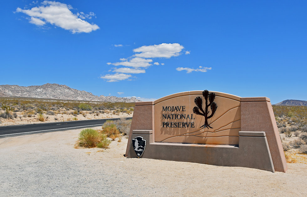 Ouest Américain - Californie - Mojave National Preserve