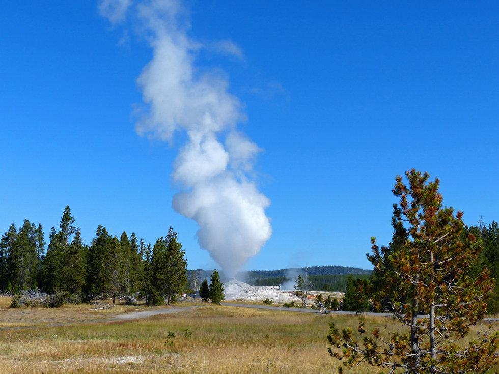 Yellowstone Caste Geyser