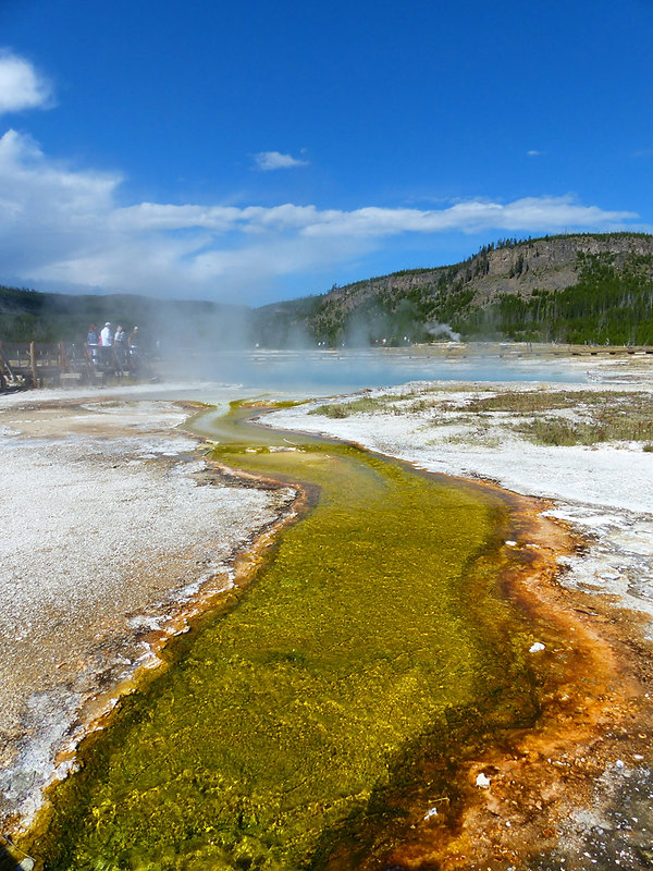 Yellowstone National Park Biscuit Basin Sapphire Pool