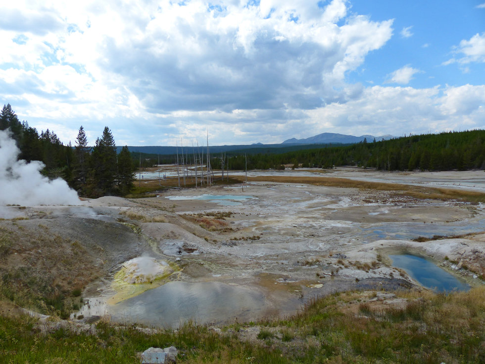 Yellowstone National Parc Norris Geyser Basin Ledge Geyse