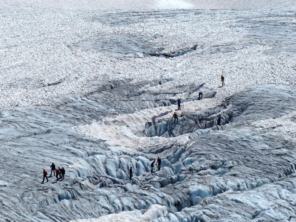 Chamonix - Refuge Albert 1er - cordées glacier du Tour