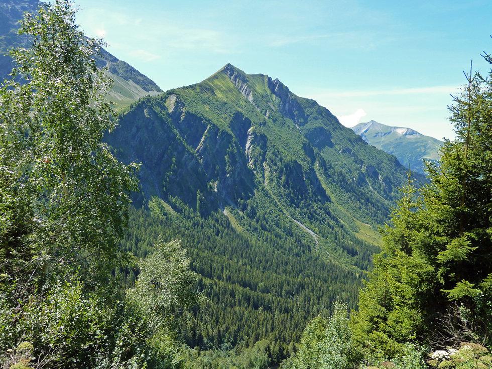 Chamonix - les Houches - Randonnée - Nid d'Aigle - mont vorassay