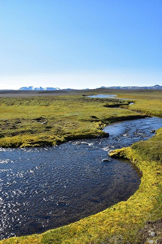 Islande piste F35 rivière mousse