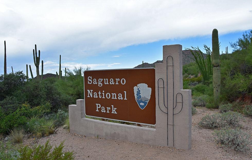 Arizona - Saguaro National Park - panneau