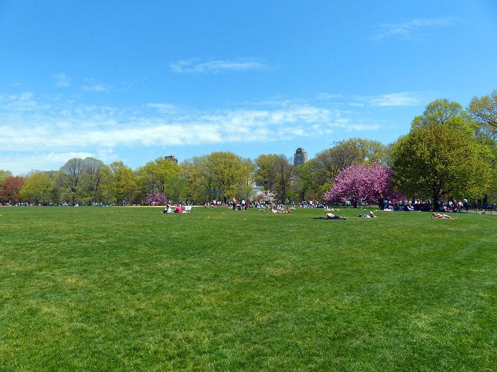 New-York - Central Park