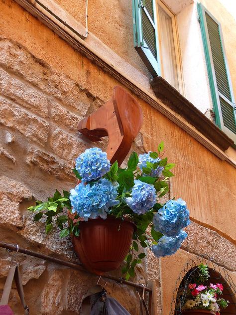 Italie Orta San Giulio fleurs