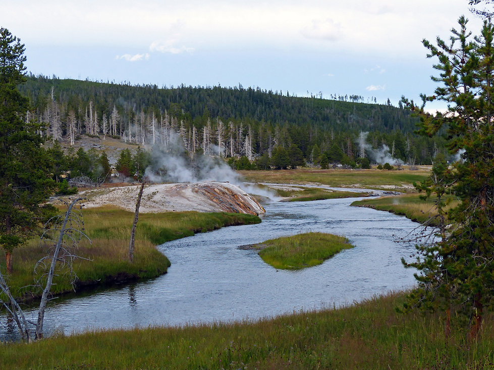 Yellowstone National Park Upper Geyser Basin
