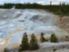 Yellowstone National Parc Norris Geyser Basin Lambchop Geyser