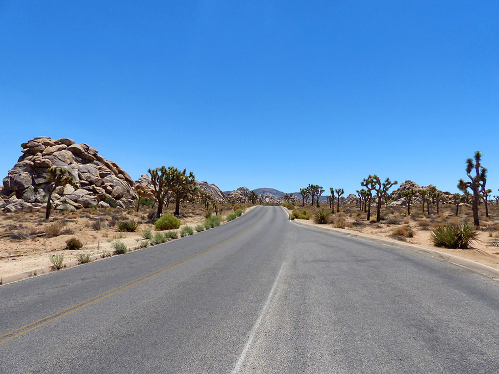 Joshua Tree National Park route