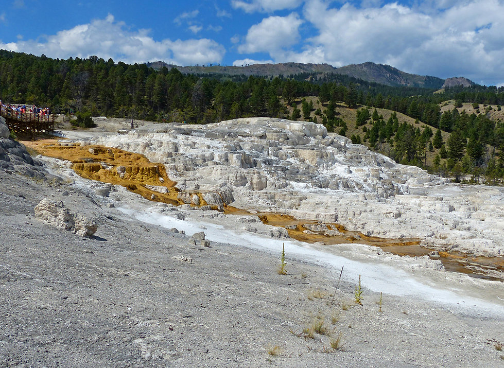 Yellowstone National Parc Mammoth Hot Spring
