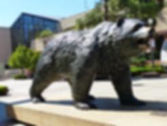 Los Angeles UCLA bruin bear