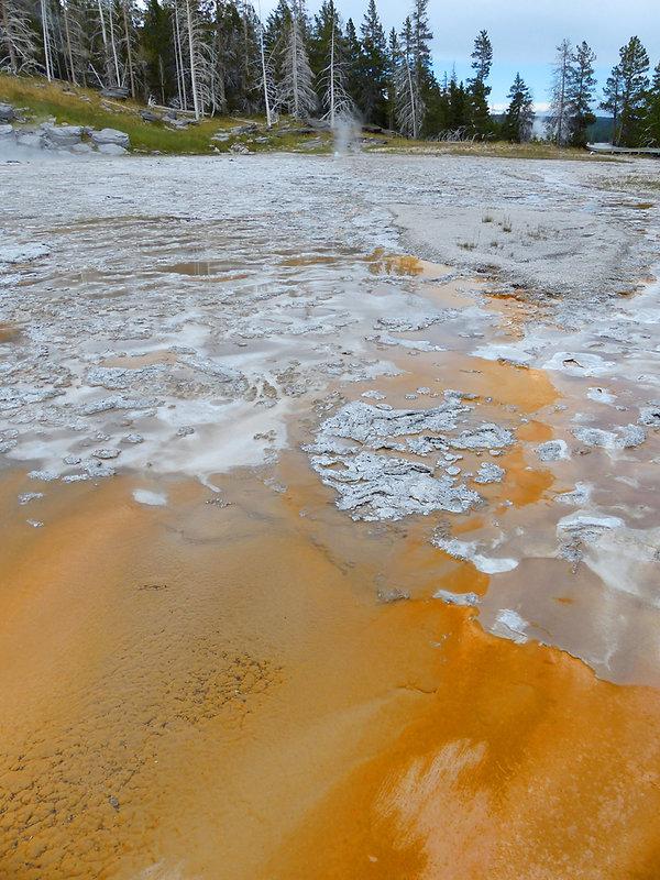 Yellowstone National Park Upper Geyser Basin Grand Geyse