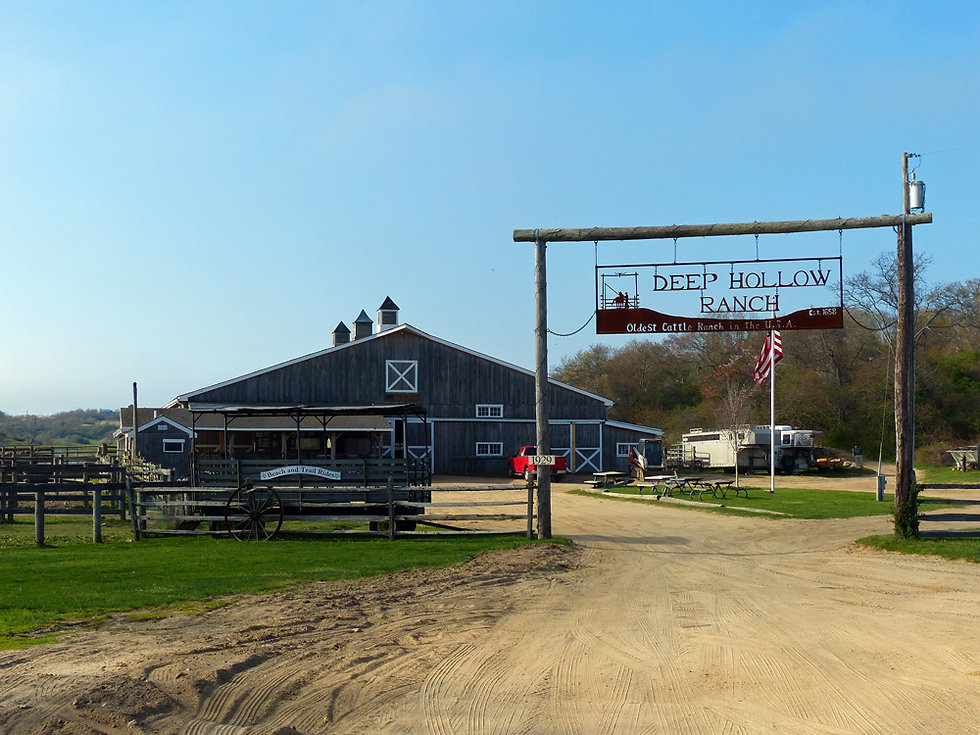 Deep Hollow Ranch - Montauk Point State Park
