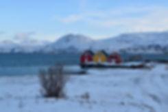 Norvège - Kvaløya - Sommarøy - maisons colorées