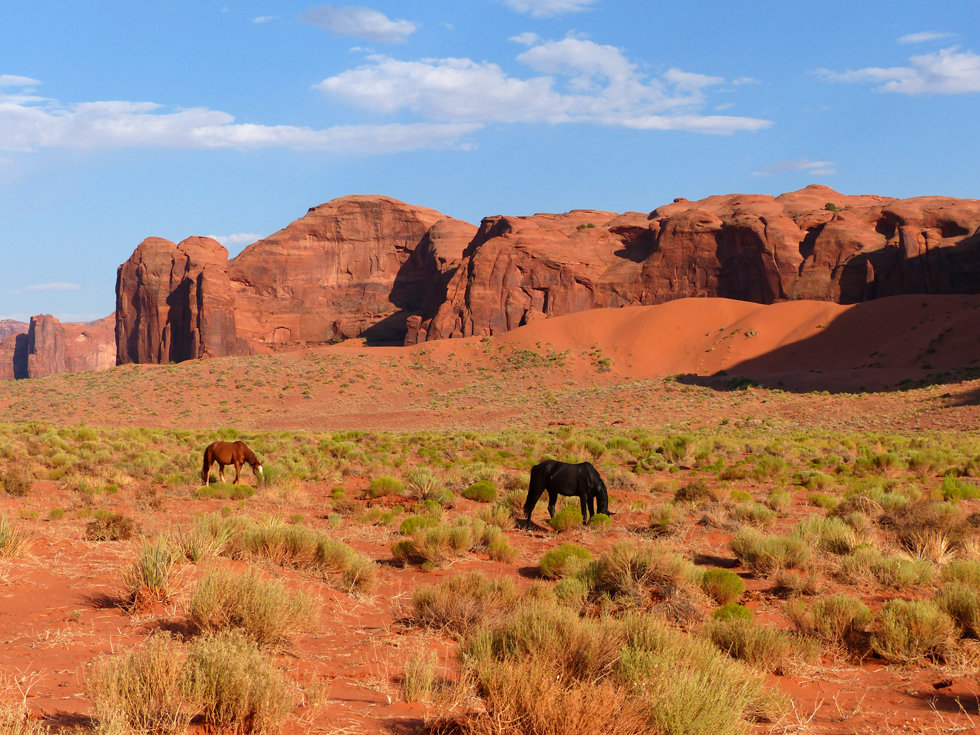 Monument Valley The Chair chevaux