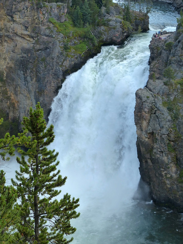 Yellowstone National Park Canyon Upper Falls Viewpoint