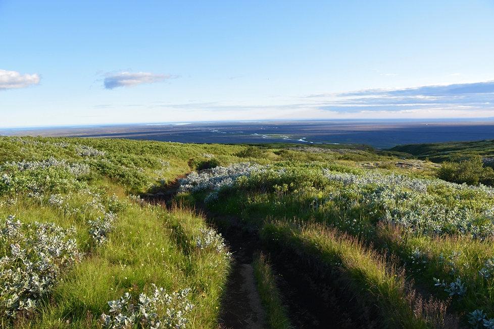 Skaftafell national park trail overlook