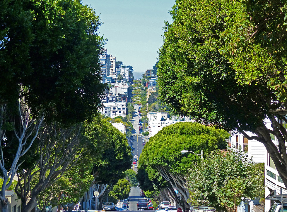 San Francisco -  Lombart Street