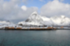 Norvège - Lofoten - Moskenesøya - Reinefjorden - Sakrisøy Rorbuer