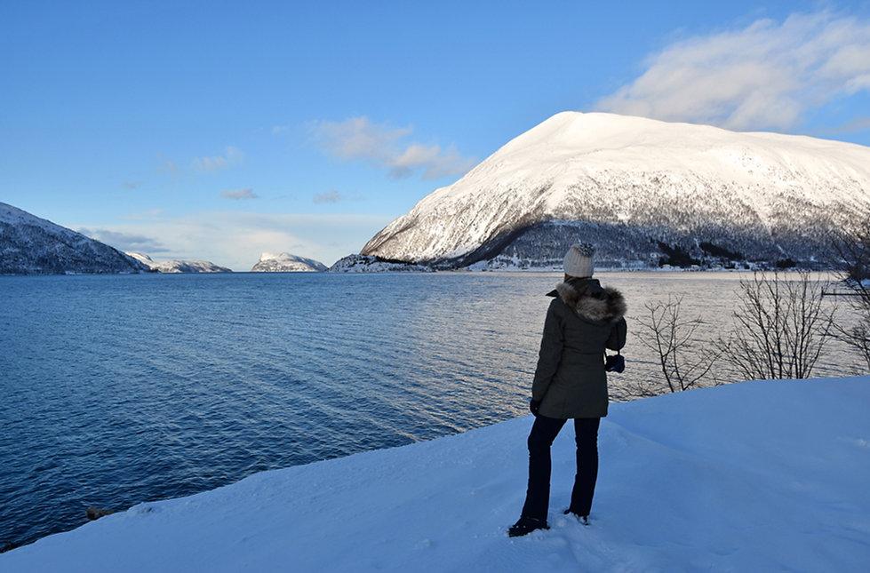 Norvège - Kvaløya -