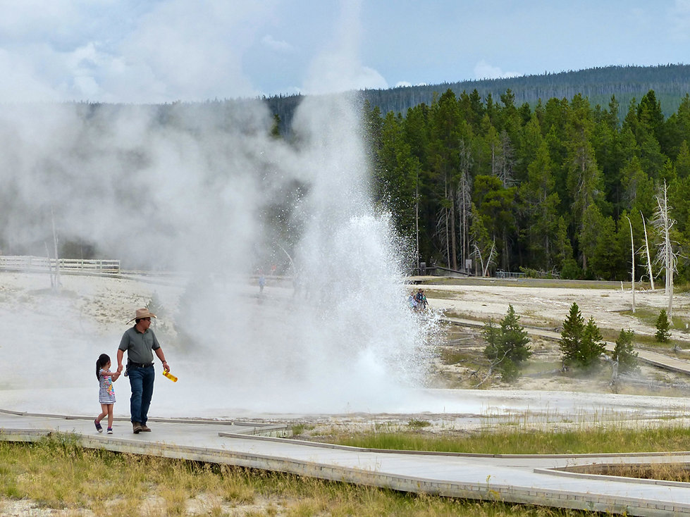 Yellowstone National Park Upper Geyser Basin Sawmill Geyser