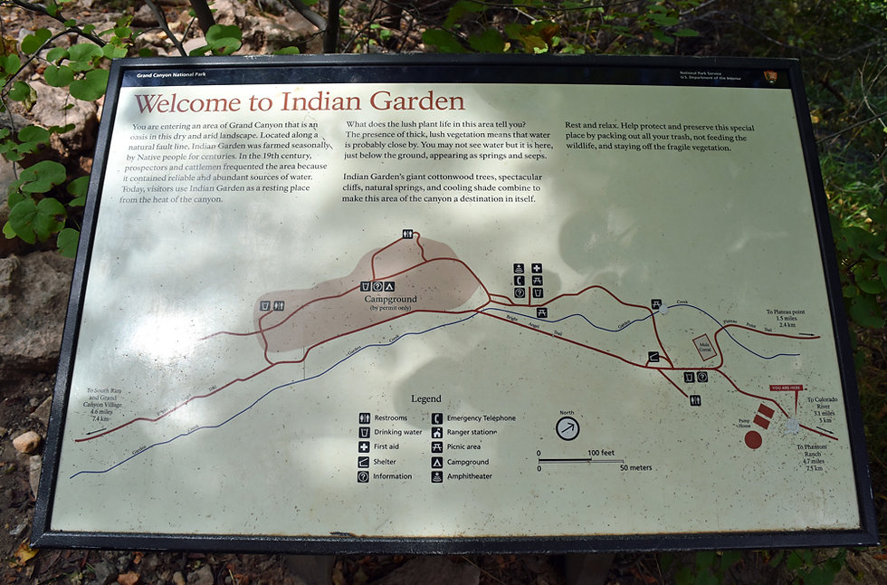 Arizona - Grand Canyon National Park - Bright Angel Trail - Indian Garden