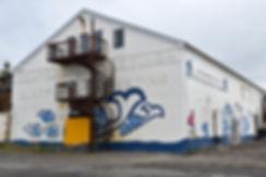 islande iceland husavik whale museum musée baleine