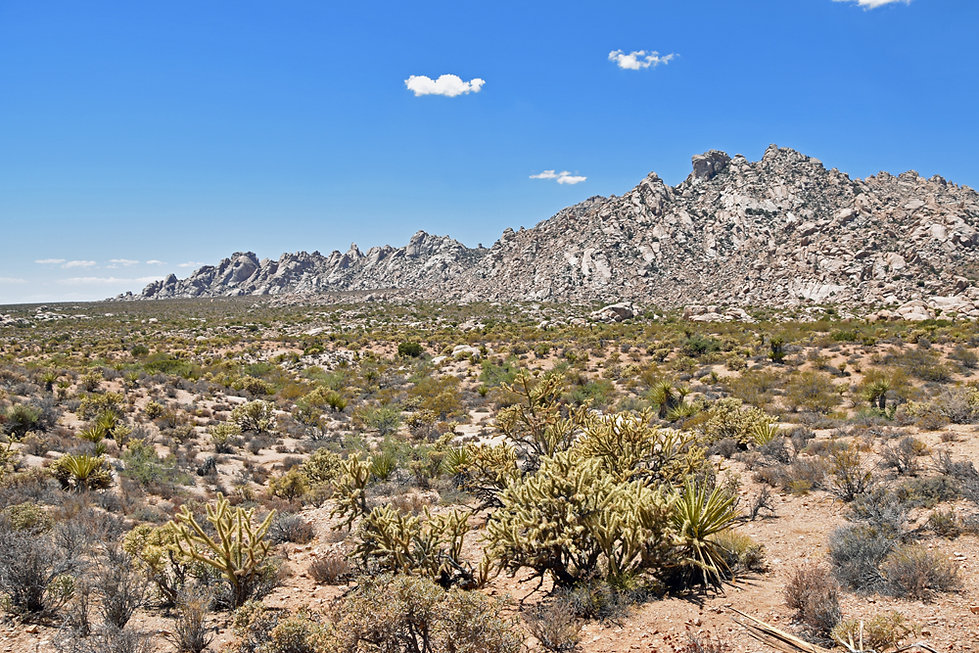Californie - Mojave National Preserve - Granite Mountains Natural Reserve