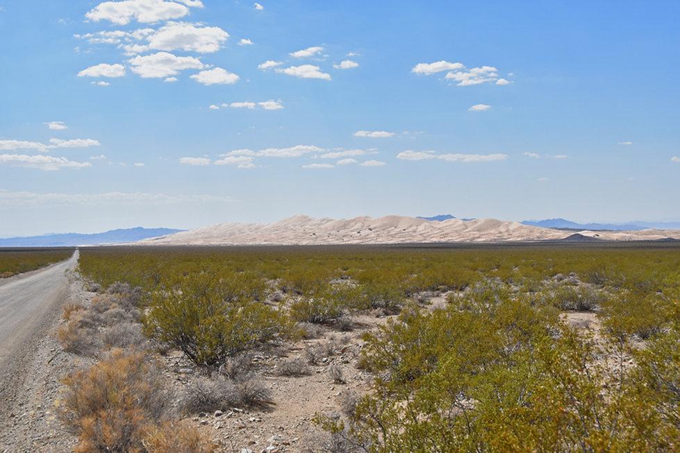 Californie - Mojave National Preserve - Kelso Dunes