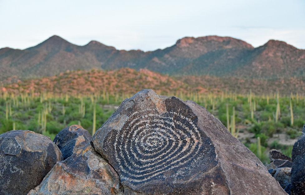 Arizona - Saguaro National Park - Signal Hill - Petroglyphes