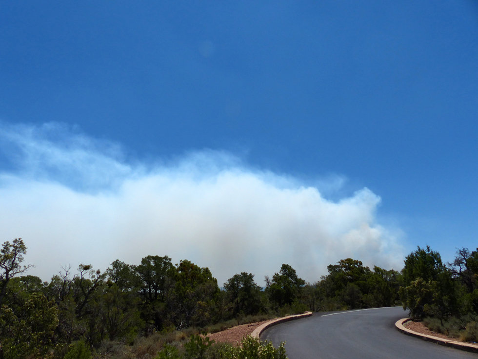 Grand Canyon national park fire forest