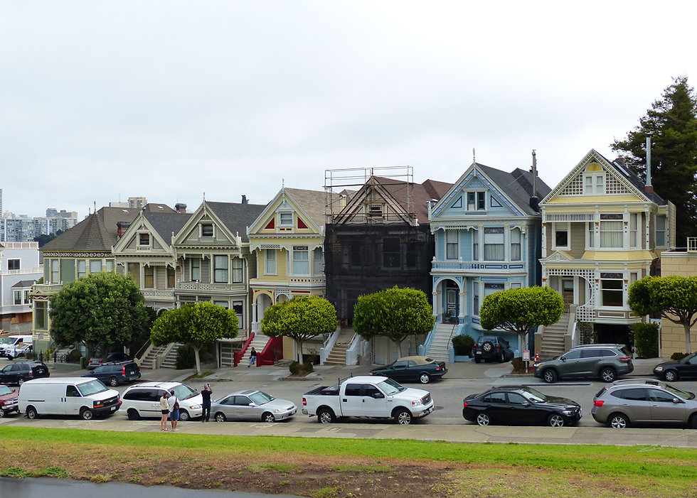 San Francisco Six Painted Ladies