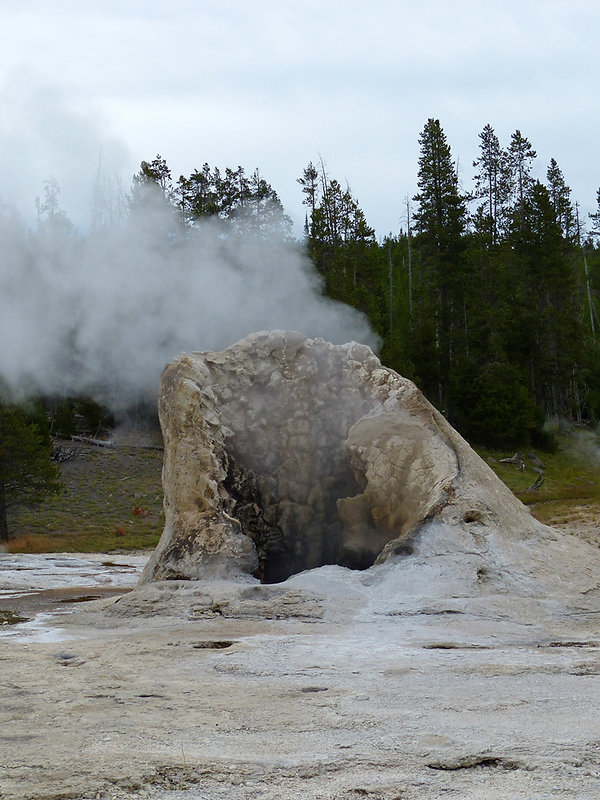 Yellowstone National Park Upper Geyser Basin Giant Geyser