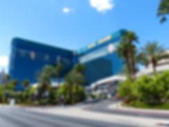 Las Vegas MGM GRAND