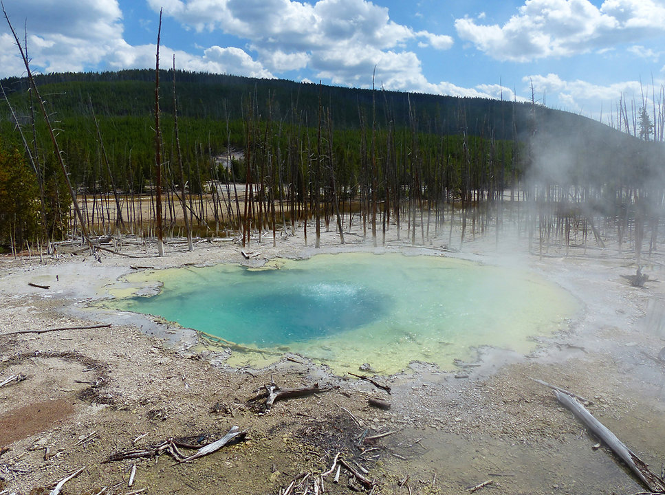 Yellowstone National Parc Norris Geyser Basin Citern Spring