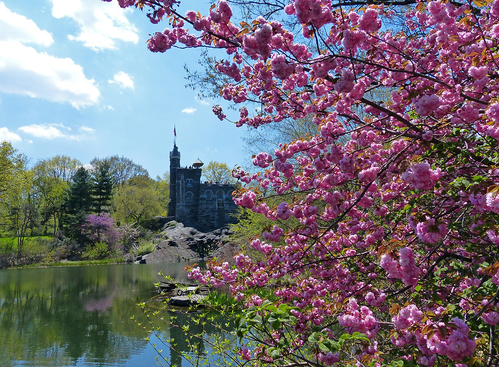 New-York - Central Park - Belvedere Castle