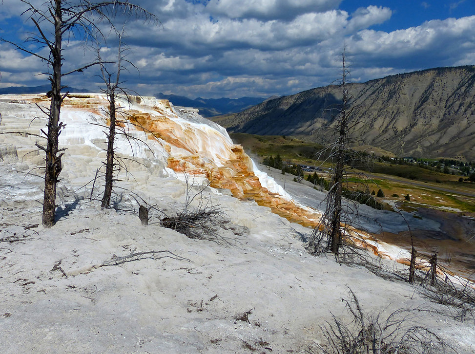 Yellowstone National Parc Mammoth Hot Spring Canary Spring