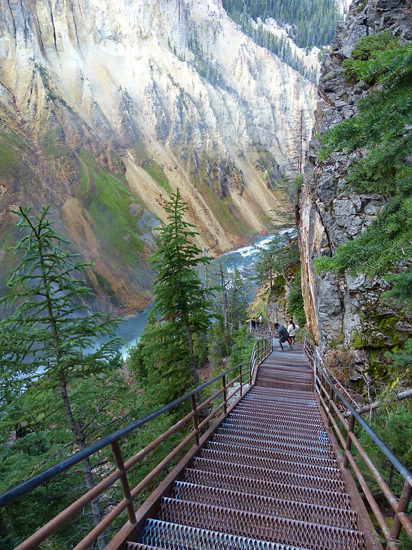 Yellowstone National Park Canyon Uncle Tom's Trail escaliers